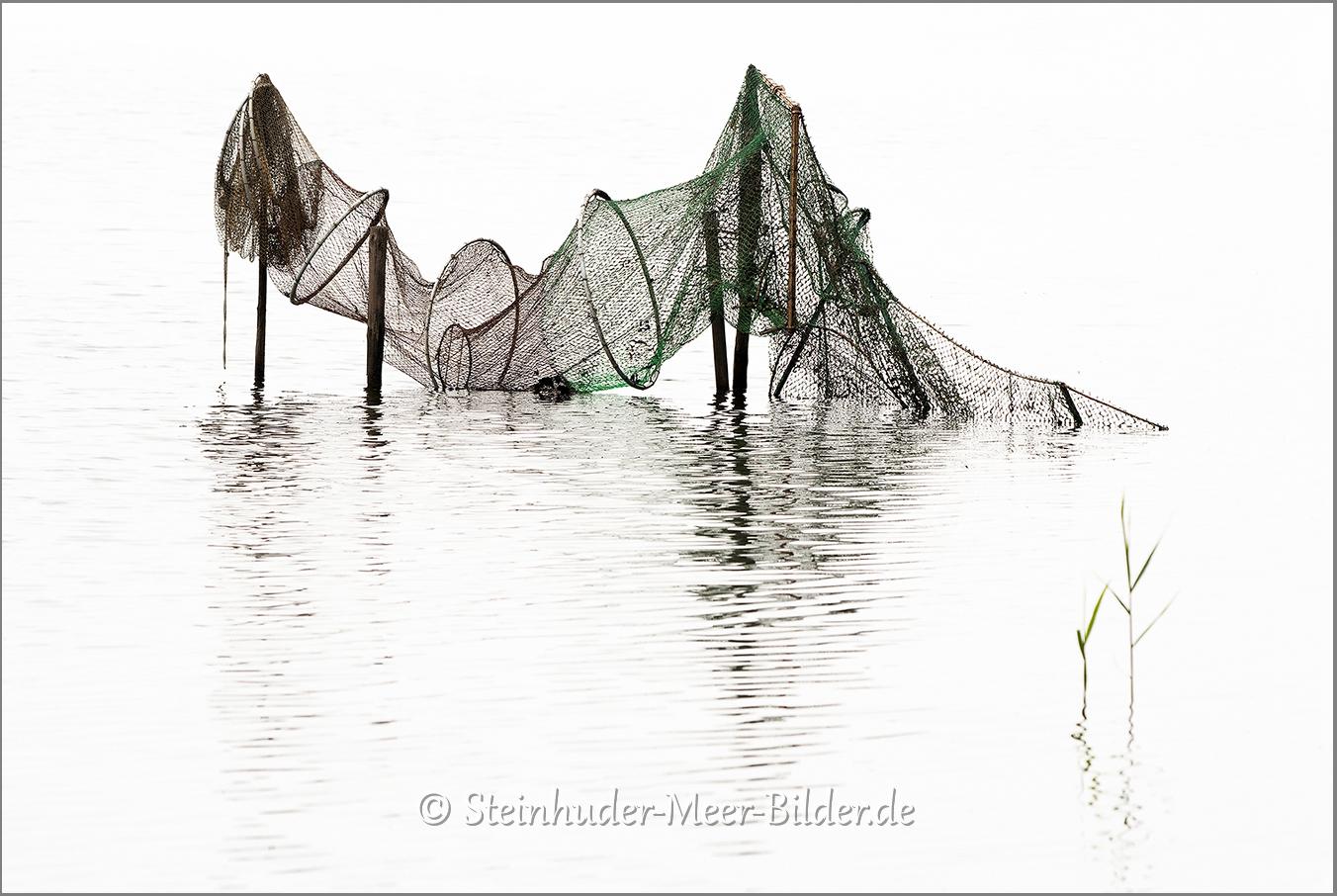 Nebel-Morgennebel-Reuse-Fischreuse-Morgenstimmung-Morgenlicht-Steinhuder Meer-A_NIK500_0924
