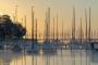 Steg-Bootssteg-Sonnenaufgang-Morgennebel-Mardorf-Segelboot-Boot-Morgenstimmung-Morgenlicht-Steinhuder Meer-B_NIK_0670