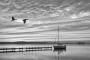 wilhelmstein-insel-bilder-schwarz-weiß-landschaften-steinhuder-meer-fotos-A_NIK1553a-sw