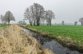 Landschaftsfotos-Naturfotos-Hagenburg-Steinhuder Meer-Naturpark-Landschaft-A_DSC9243-1