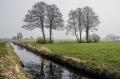 Landschaftsfotos-Naturfotos-Hagenburg-Steinhuder Meer-Naturpark-Landschaft-A_DSC9257-1