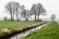 Landschaftsfotos-Naturfotos-Hagenburg-Steinhuder Meer-Naturpark-Landschaft-A_DSC9276-1
