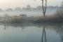 Landschaftsfotos-Naturfotos-Hagenburger-Teiche-Nebel-Morgennebel-Dunst-Morgenstimmung-Steinhuder Meer-Naturpark-Landschaft-A_SAM1906.jpg