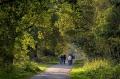 Landschaftsfotos-Naturfotos-Radfahrer-Mardorf-Steinhuder Meer-Naturpark-Landschaft-BXO1I1870-1