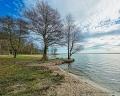 Landschaftsfotos-Naturfotos-Strand-Ufer-Mardorf-Steinhuder Meer-Naturpark-Landschaft-A_NIK2966-1