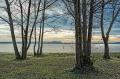 Landschaftsfotos-Naturfotos-Strand-Ufer-Mardorf-Steinhuder Meer-Naturpark-Landschaft-A_NIK2978-1