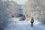 winter-meerbruchswiesen-raureif-bilder-landschaften-steinhuder-meer-fotos-A_NIK9417 Kopie