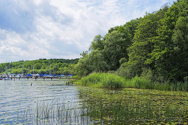 Landschaftsfotos-Naturfotos-Ostenmeer-Steinhuder Meer-Naturpark-Landschaft-B_DSC3798-1