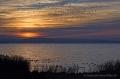 Landschaftsfotos-Naturfotos-Schwarm-Vogelschwarm-Stare-fliegender-Ostenmeer-Steinhuder Meer-Naturpark-Landschaft-A_NIK2516-1