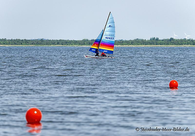 Sportfotos-Segelboot-Segeln-Segelsport-Sport-Wassersport-Steinhuder-Meer-Naturpark-B_DSC0394-1
