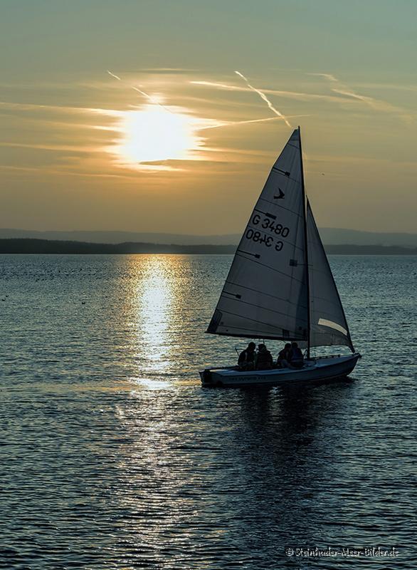 Sportfotos-Segeln-Segelboot-Segelsport-Sport-Wassersport-Steinhuder-Meer-Naturpark-A_NIK1150-1