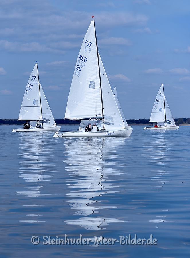 regatta-segelboote-flying-dutchman-bilder-landschaften-steinhuder-meer-fotos-A_SAM3117a