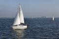 Sportfotos-Segeln-Segelboot-Segelsport-Sport-Wassersport-Steinhuder-Meer-Naturpark-A_NIK1042-1
