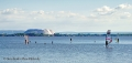 Sportfotos-Windsurfing-Windsurfer-Surfer-Sport-Wassersport-Steinhuder-Meer-Naturpark