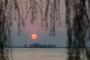 Fotos-Bilder-Landschaft-Steinhude-Steinhuder-Meer-Naturpark-Abenstimmung-Sonnenuntergang-Wolkenhimmel-Wolkenstimmung-A_NIK9809