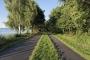 Fotos-Bilder-Landschaftsfotos-Naturfotos-Promenade-Steinhude-Steinhuder Meer-Naturpark-Landschaft-B_DSC3873-1