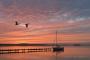 Fotos-Bilder-Landschaftsfotos-Naturfotos-Steg-Bootssteg-Boot-Segelboot-Segelyacht-Abendstimmung-Abendrot-Steinhude-Steinhuder Meer-Naturpark-Landschaft-A_NIK1553a