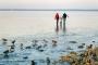 Fotos-Bilder-Landschaftsfotos-Naturfotos-Winter-Eis-zugefrorenes-Steinhude-Steinhuder Meer-Naturpark-Landschaft-BXO1I4724-1