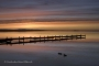 Silhouetten-Enten-Steg-Sonnenstrahlen-Sonnenuntergang-Landschaftsfotos-Naturfotos-Abendrot-Abendstimmung-Steinhude-Steinhuder Meer-Naturpark-Landschaft-A_SAM0358