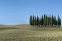landschaft-Toscana-Toskana-Crete-Senesi-Zypressen-Baumgruppe-Baeume-Baum-Italien-A_DSC2507a