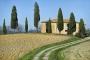 landschaft-Toscana-Toskana-Val-d'Orcia-Finca-Zypressen-Italien-A_DSC2499a