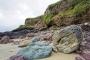 landschaft-felsen-white-rocks-giants-causeway-Strand-Nord-kueste-Meer-Irland-A-Sony_DSC2540a