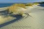 landschaft-sand-duenen-strand-hafer-meer-kueste-ellenbogen-list-Sylt-A_NIK500_2439a