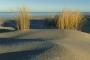 landschaft-sand-duenen-strand-hafer-meer-kueste-ellenbogen-list-Sylt-C_NIK_4118 Kopie