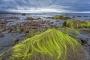 landschaft-white-rocks-giants-causeway-Strand-Nord-kueste-Meer-Irland-A-Sony_DSC2514a