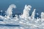 harz-mystische-baum-baeume-gestalten-figuren-schneebedeckte-panorama-winter-schnee-verschneit-landschaft-Sachsen-Anhalt-C_NIK_3720 Kopie