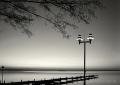 Landschaftsfotos-Naturfotos-Abendstimmung-Wolkenstimmung-Wolkenhimmel-Steg-Bootssteg-Schwarz-Weiss-Steinhude-Steinhuder Meer-Naturpark-A_DSC8950sw