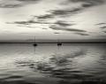 Landschaftsfotos-Naturfotos-Boot-Abendstimmung-Wolkenstimmung-Wolkenhimmel-Schwarz-Weiss-Steinhude-Steinhuder Meer-Naturpark-B_DSC0782sw