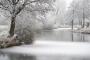 winter-eisdecke-raureif-bilder-landschaften-steinhuder-meer-fotos-A7RII-DSC01149