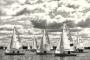Regatta-Sportfotos-Segeln-Segelboot-Segelsport-Sport-Wassersport-Steinhuder-Meer-Naturpark-A_SAM2991sw