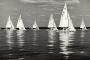 Sportfotos-Segeln-Segelboot-Segelsport-Sport-Regatta-Wassersport-Steinhuder-Meer-Naturpark-A_SAM3117sw