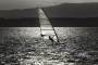 Sportfotos-Surfing-Surfer-Surfsport-Sport-Wassersport-Windsurfer-Windsurfing-Steinhuder-Meer-Naturpark-AXO1I8645sw
