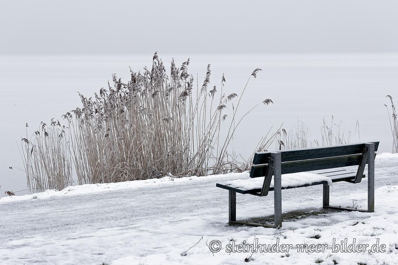 Bank-schilf-winter-steinhuder-meer-eisdecke-schnee-zugefroren-eisdeckedecke-naturpark-naturraum-region-B_SAM0471 Kopie