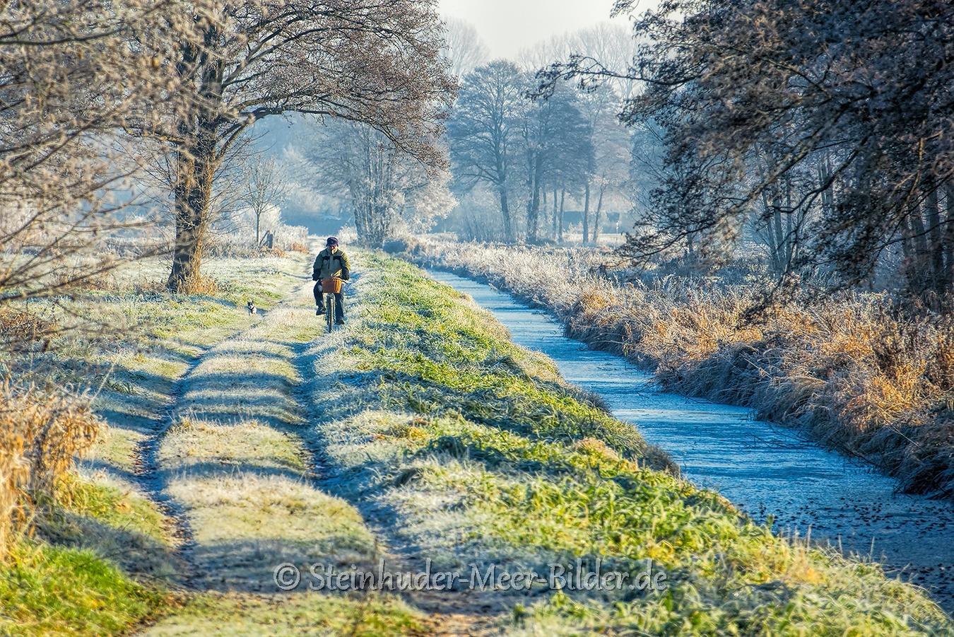 hagenburg--winter-steinhuder-meer-eis-schnee-zugefroren-eisdecke-naturpark-naturraum-region-RX_00458