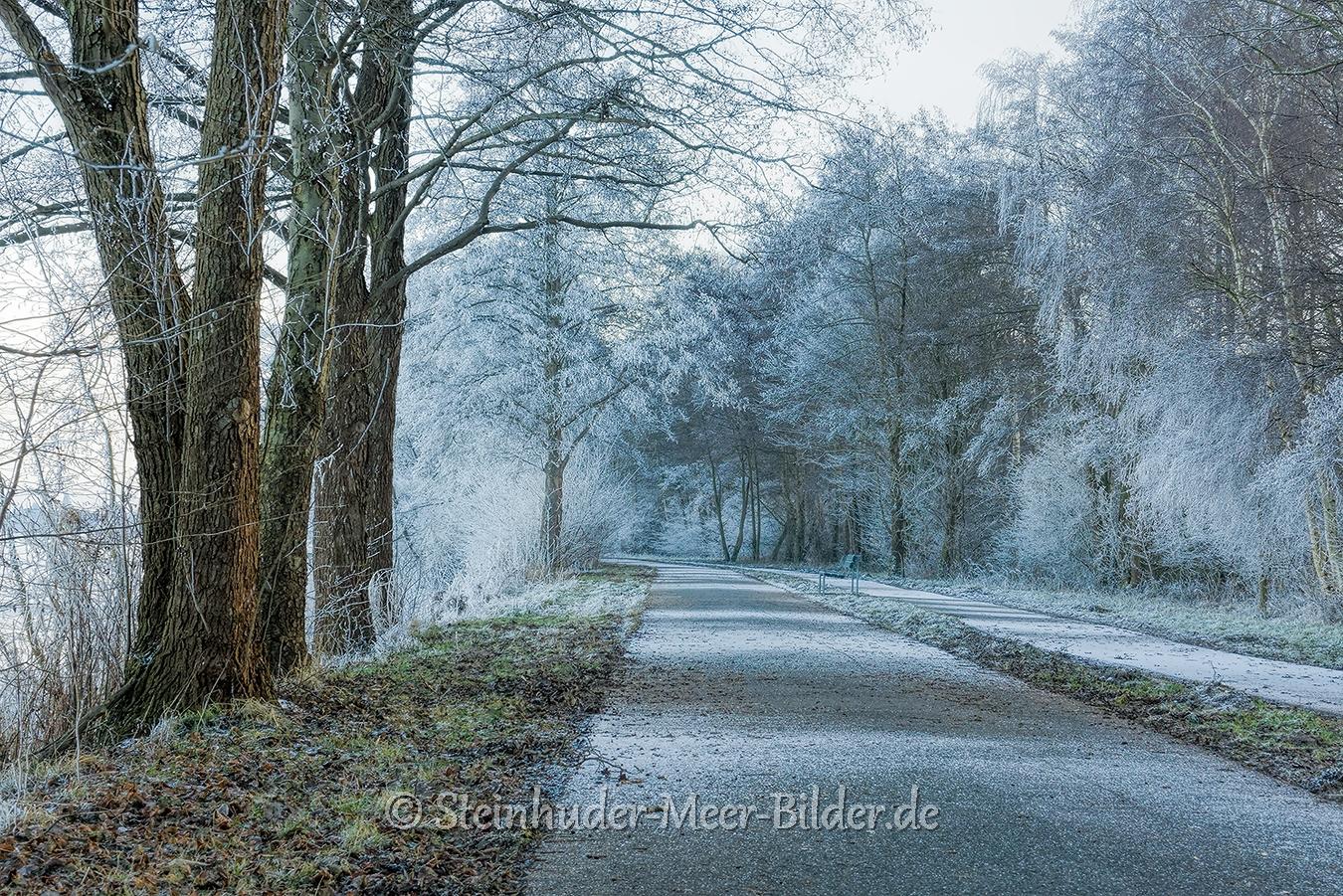 hagenburg--winter-steinhuder-meer-eis-schnee-zugefroren-eisdecke-naturpark-naturraum-region-RX_01136