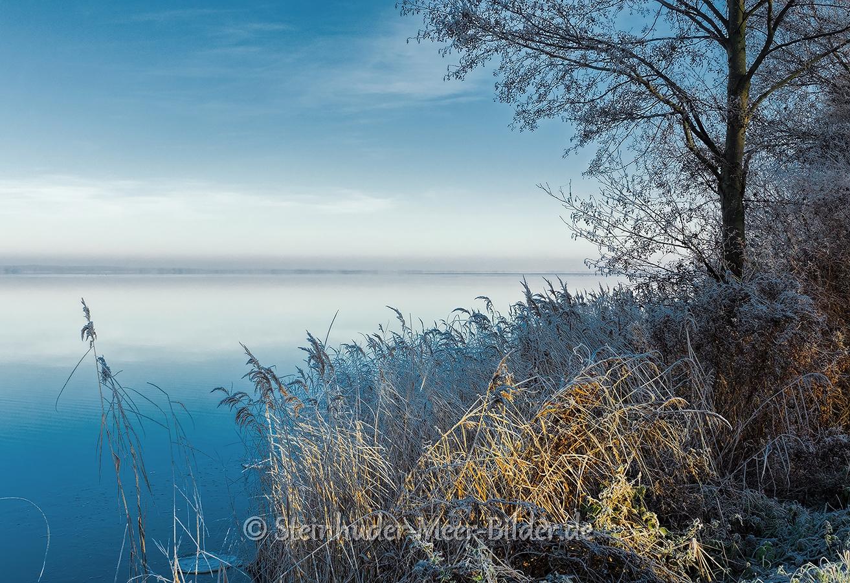 hagenburg--winter-steinhuder-meer-eisdecke-schnee-zugefroren-eisdeckedecke-naturpark-naturraum-region-RX_00407