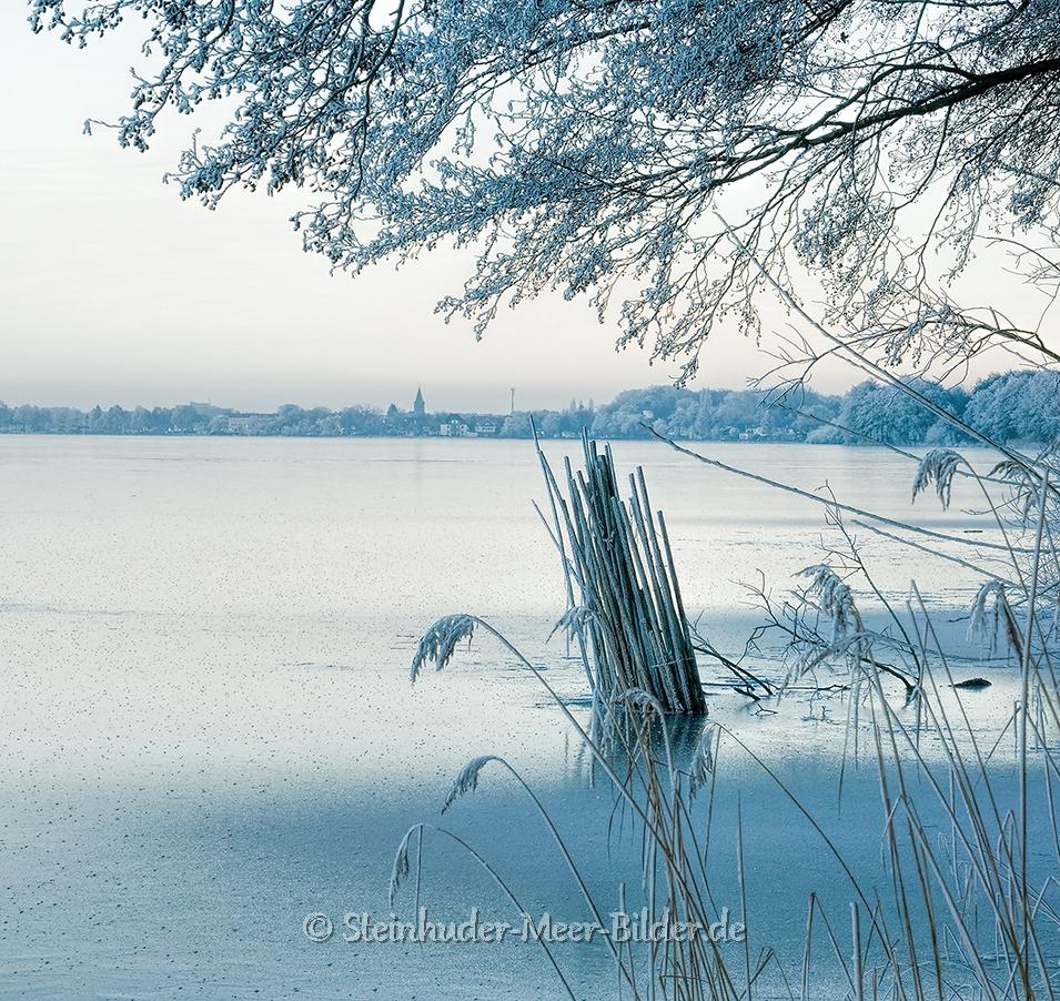 hagenburg--winter-steinhuder-meer-eisdecke-schnee-zugefroren-eisdeckedecke-naturpark-naturraum-region-RX_01133a