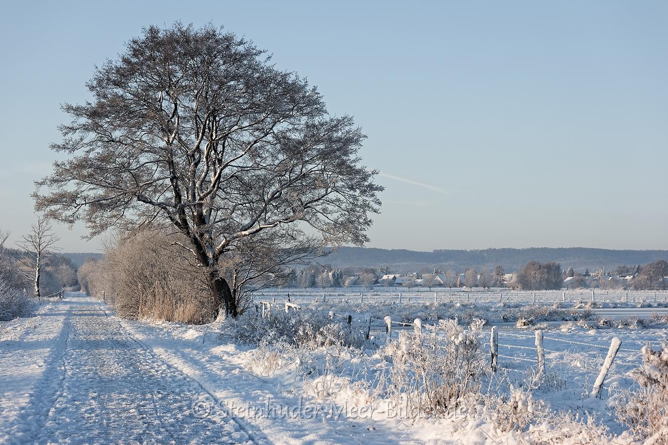 meerbruchswiesen-winter-steinhuder-meer-eis-schnee-zugefroren-eisdecke-naturpark-naturraum-region-B_SAM0417 Kopie