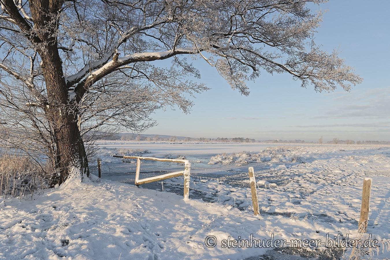 meerbruchswiesen-winter-steinhuder-meer-eis-schnee-zugefroren-eisdecke-naturpark-naturraum-region-C_SAM0158 Kopie