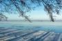 hagenburg--winter-steinhuder-meer-eisdecke-schnee-zugefroren-eisdeckedecke-naturpark-naturraum-region-RX_00467