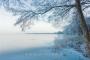 hagenburg--winter-steinhuder-meer-eisdecke-schnee-zugefroren-eisdeckedecke-naturpark-naturraum-region-RX_01138