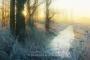 sonnenaufgang-meerbruchswiesen-winter-steinhuder-meer-eis-schnee-zugefroren-eisdecke-naturpark-naturraum-region-RX_00846a