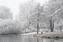 winter-steinhuder-meer-eis-schnee-zugefroren-eisdecke-naturpark-naturraum-region-A7RII-DSC01150